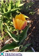 Весна идет, весне дорогу! - Страница 8 780c6e02a1c0t