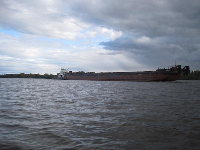 За грибами в Конаково (Тверская область, Волга)! 9c177f18b8b1