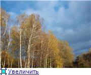 "Фотоконкурс ""Золотая осень"" Bd7b475a6fd9t"