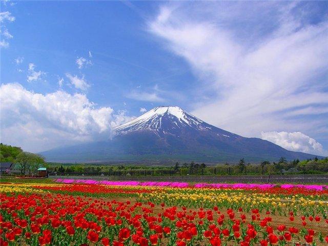 Красивые пейзажы Японии A81b4ba55015
