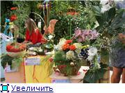 Цветочные выставки и ярмарки в г. Хабаровске. - Страница 3 0741dcbd8c1bt
