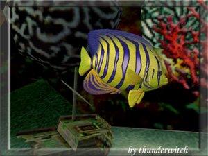 Все для аквариумов, водоемов - Страница 2 546d884edecd
