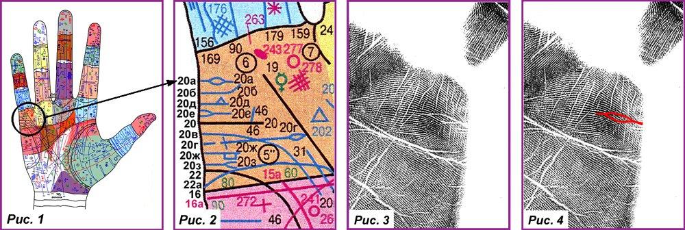 Основные, второстепенные, редкие линии и знаки 4c4d3ac5da21