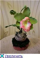 Цветы ручной работы из полимерной глины E4ac8afa061ft