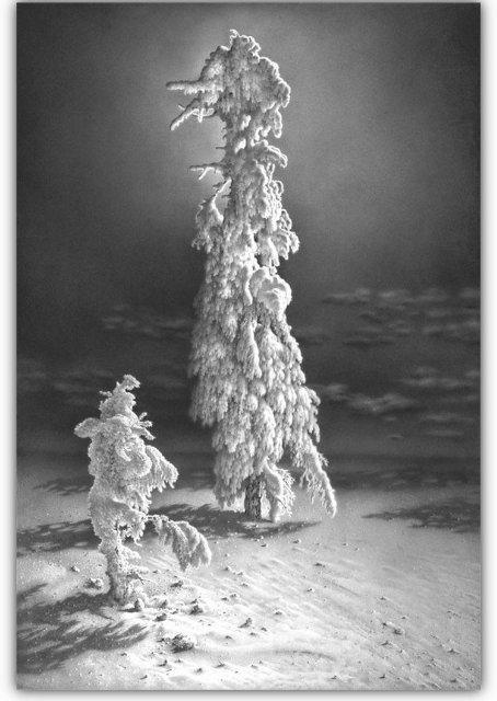 Снег, согревающий душу (Доленджашвили Г.) 3a3d6547ba2d