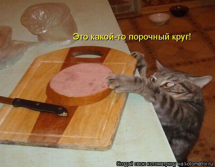 Смешные картинки 2b9eab25c333