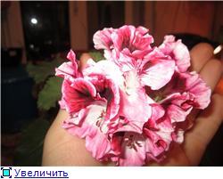 Красота без границ - Страница 6 3f9aba524842t