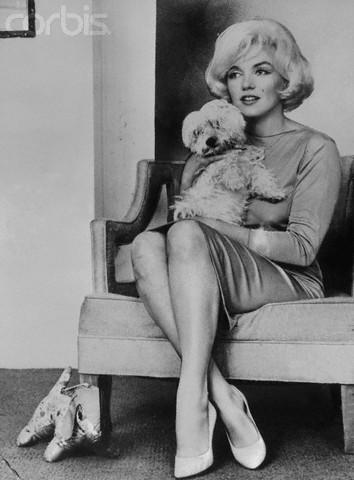 Мерилин Монро/Marilyn Monroe E0e1e70f7746