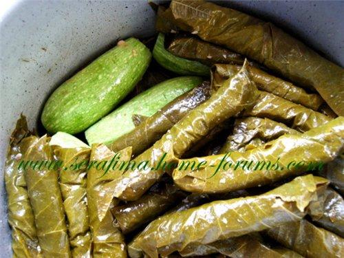 Уварак даували махши. Фаршированные виноградные листья. Араб.кухня C79b10ce4801