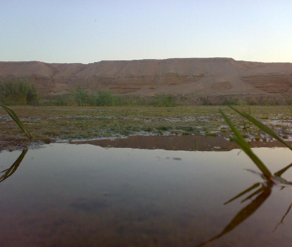 قرى البوكمال 9048976c09dc