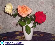 Мои любимые цветы- розы - Страница 2 2c7932034d07t