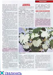 Пеларгонии - Страница 23 Af53af28a411t