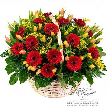 Поздравляем с Днем Рождения Юлию (coon) 04eaf424227at