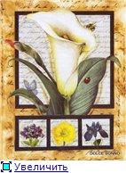 Цветы, букеты 191a03475c5dt