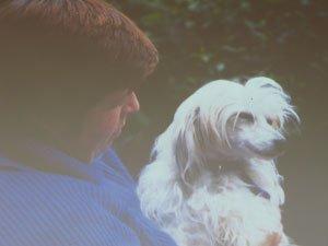 Диалог с собакой: сигналы примирения 7fee58ad29ac