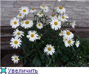 Лето в наших садах - Страница 6 8b944d7fda9at