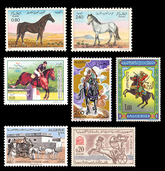 Pferde - Seite 3 21fd80f76901