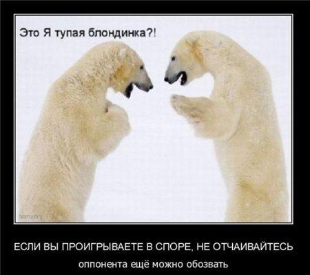 Прикольно - Страница 2 3be52e70426d