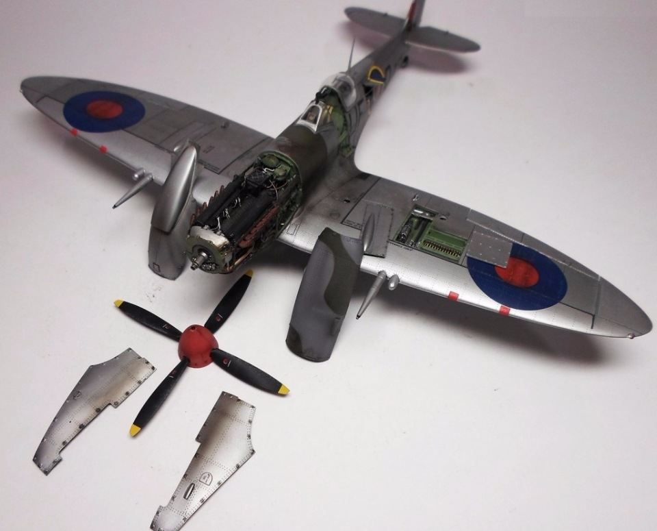Supermarine Spitfire Eduard 1/48 7538412a61e0