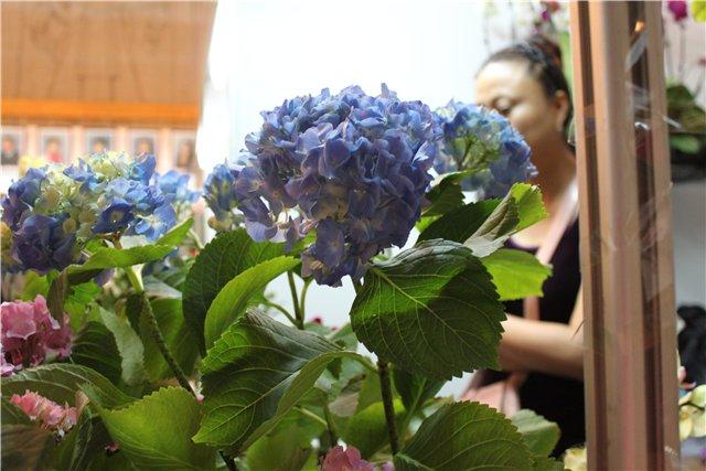 Выставка ландшафт и приусадебное хозяйство 2011, Алматы. - Страница 2 490c7c6a4b24
