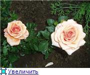 Specially for Karkela )))    Тестирование сербок и проч. - Страница 3 7634b73d90e7t