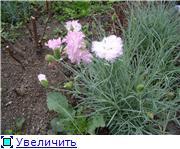 Лето в наших садах - Страница 2 Abfc1bfa4d78t
