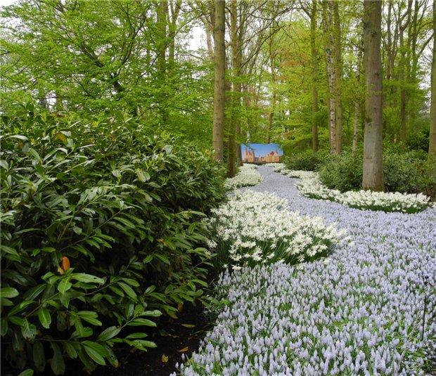 Рай тюльпанов или Кёкнхов - 2012 4f015a12752d