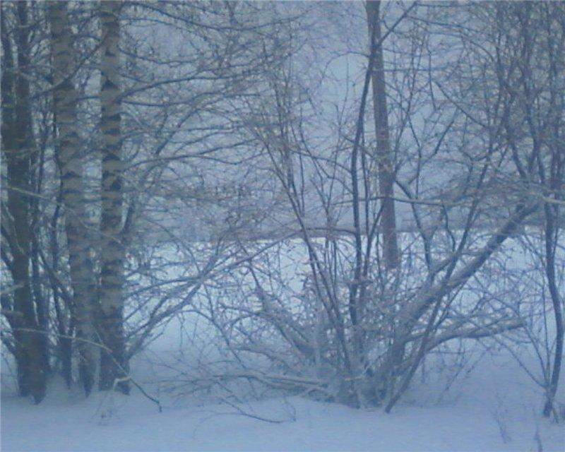 """Зима в наших краях"". Голосование. Eb6ddd79e501"