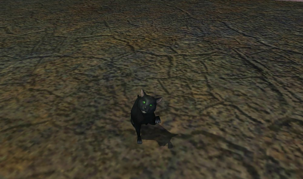 EVERQUEST (MMORG game BLOG) C851e0681aa7