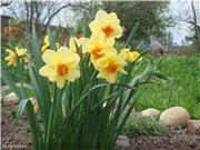 Весна идёт... - Страница 2 Fe5cf5760758t