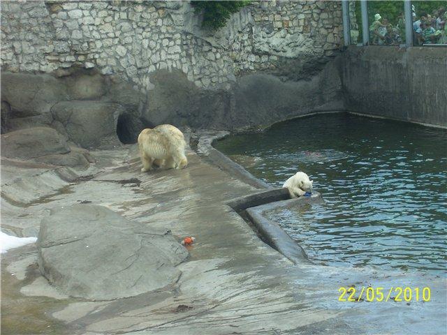 Зоопарк 18b1d6644c9d