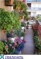 Балконная Идиллия или Драйв D6ea2a9dc38bt