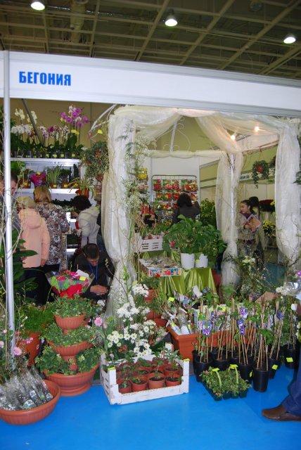 Международная выставка цветов AstanaFlorExpo - 2011 2fdc19c96ac4