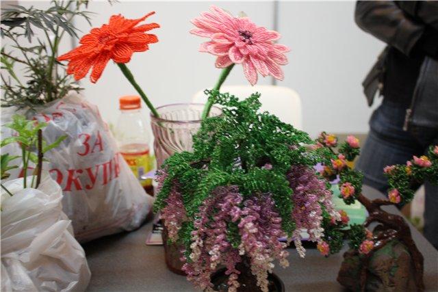 Выставка ландшафт и приусадебное хозяйство 2011, Алматы. 7ea9bb6f8d6d