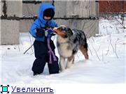 Австры и дети 3bf06500f8e9t