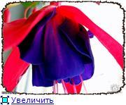 ФУКСИИ В ХАБАРОВСКЕ  - Страница 3 0aad160c5847t