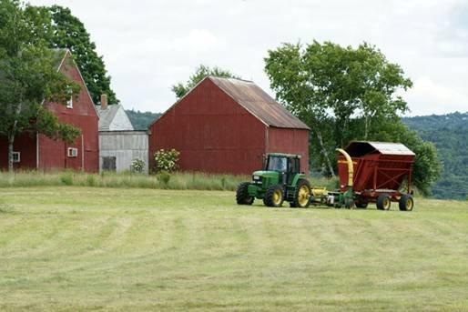Фермерское хозяйство , с чего начать ? 4cbf71721c88
