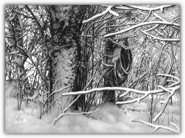 Снег, согревающий душу (Доленджашвили Г.) 501330291117