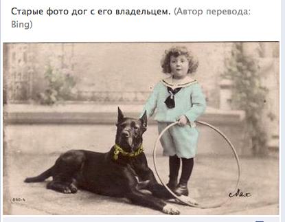 """Доги и """"светское""""общество 414048310558"""