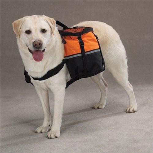 Интернет-зоомагазин Pet Gear - Страница 3 8d420635194d