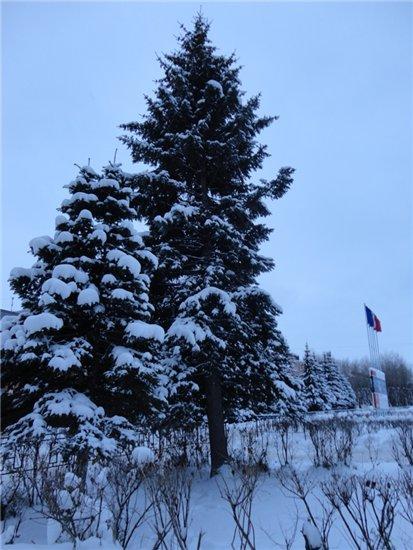 Зимняя сказка на наших фотографиях - Страница 3 Dffa4237c99a