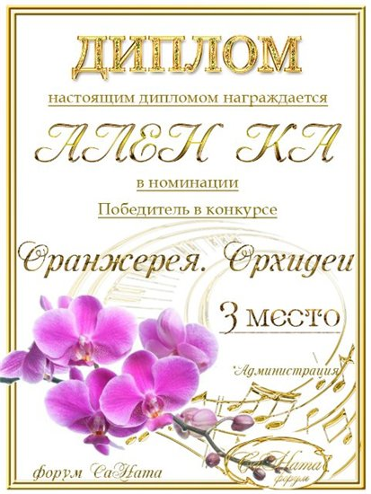 """Поздравляем победителей конкурса """"Оранжерея. Орхидеи""""! Eec088b651dft"""