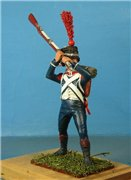 VID soldiers - Napoleonic french army sets - Page 2 B50550cf3d19t