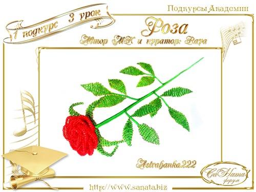 """Галерея Подкурсов. """"Роза"""" D9d9961affb4t"""