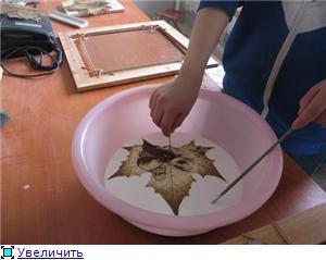 Креатив на кленовых листьях Ee656a16014dt