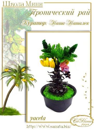 Выпуск работ Школы мини - Тропический рай 8563730c8eedt