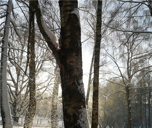 Зимняя сказка на наших фотографиях - Страница 12 083f155a3151
