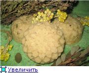 Беседка Мыловаров A50353c7e6a7t