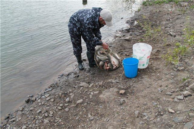 Рыбалка 140153c54612