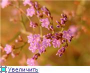 Николаев - город корабелов. Ad2b21d6c12ft